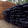 厂家专业生产防腐油木杆 油炸杆 油木杆 黒木杆油木电线杆